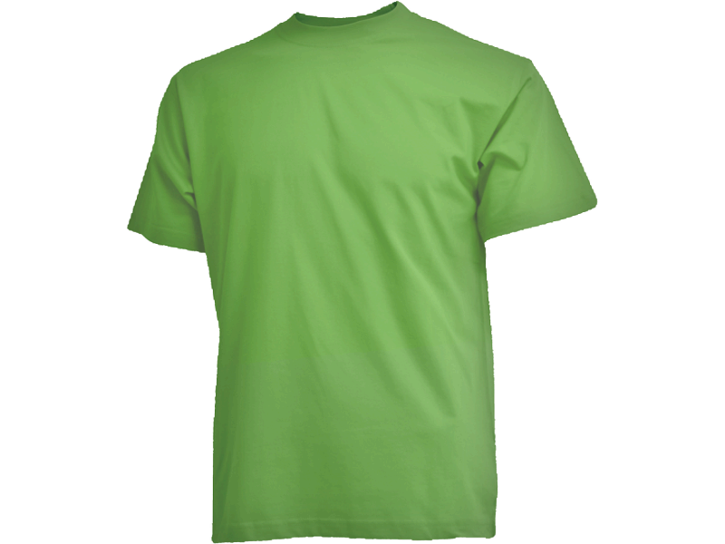 Limegrøn Camus t-shirt